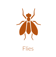 Integrated fly managment